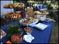 appetizer table catered by Felico's Catering at an outdoor wedding