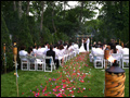 Long Island wedding ceremony in a back yard with rose petals and torches decorating the isle